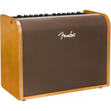 Fender Accoustic 100